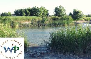 WetlandsPark-lasvegas